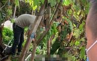 Sợ bị đánh, nam thanh niên rơi từ tầng 4 tử vong trong lúc chạy trốn