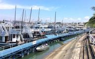 Nguy cơ phá sản vì đại dịch COVID-19, các chủ tàu du lịch ở Quảng Ninh kêu cứu