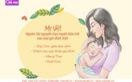 Mẹ Việt – Thương hiệu hướng dẫn phương pháp giáo dục sớm Glenn Doman