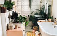 9 ý tưởng độc đáo tạo vườn treo xanh tươi, đẹp mắt trong phòng tắm nhỏ cho những ngày ở nhà giãn cách