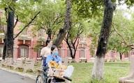 Thí sinh gãy chân nặng vẫn gắng ngồi xe lăn đến điểm thi