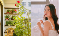 Huỳnh Hồng Loan chia sẻ thời điểm tưới nước cho hoa hồng để hoa nở rực rỡ như ban công nhà nữ diễn viên
