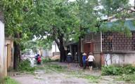 Thanh Hóa: Thiệt hại ban đầu do bão số 6 gây ra ước tính 167 tỷ đồng