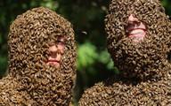 """""""Sởn gai ốc"""" xem hơn 16000 con ong đậu trên cơ thể"""