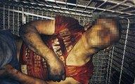 Bức ảnh cậu bé bị đánh đập dã man khiến cả nước Pháp choáng váng