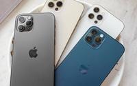 iPhone 12 xách tay tràn lan, rẻ hơn gần 5 triệu đồng so với giá công bố