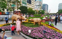 Giá nhà đắt hơn, học phí mắc hơn, vì đâu TP.HCM phải nhường vị trí quán quân thành phố đắt đỏ nhất Việt Nam cho Hà Nội?