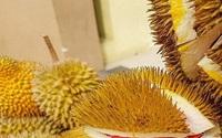 Bất ngờ khi sầu riêng còn có ruột màu này ngoài màu vàng truyền thống