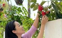 Chiêm ngưỡng khu vườn đầy hoa trái nhà Á hậu Trịnh Kim Chi