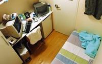 Bố mẹ vợ Trấn Thành vẫn ở nhà thuê, giá nhà Hàn Quốc 'chát' đến mức nào?