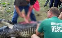 """Bắt được cá sấu """"khủng"""" nặng hơn 2 tạ, cảnh sát mổ bụng phát hiện cảnh ám ảnh"""
