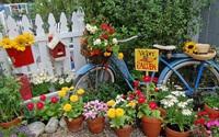 Tận dụng đồ cũ để trang trí khiến khu vườn của bạn trở nên sống động hơn bao giờ hết