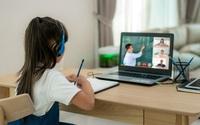 4 nhóm thực phẩm tốt cho mắt nên khuyến khích trẻ ăn nhiều khi học online