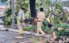 Ảnh: Lực lượng chức năng gấp rút khắc phục hậu quả bão số 13 tại Thừa Thiên - Huế
