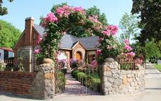"""Những cổng nhà có hoa hồng leo lãng mạn đẹp đến """"lịm tim"""""""