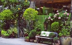 Sau nhiều năm làm việc chăm chỉ, người phụ nữ 50 tuổi mua căn nhà vườn xinh xắn sống cuộc đời an yên