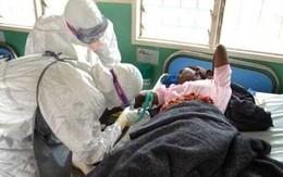 SỐC: Gần 200 cán bộ y tế chết vì dịch Ebola