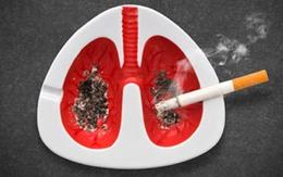 Trao giải tuyên truyền về tác hại của thuốc lá
