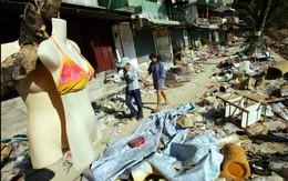 Vùng đất chết hồi sinh từ thảm họa động đất, sóng thần khủng khiếp 10 năm trước