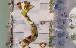 Ngắm bản đồ Việt Nam bằng hoa bên sông Hàn