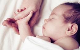 """""""Bàn tay của bố"""" – Chiến dịch tôn vinh hình ảnh người cha trong gia đình"""