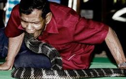 Phát sốc với ngôi làng coi rắn độc như thú cưng