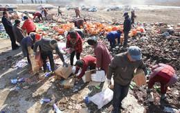 Hàng chục tấn hàng giả được đem đi tiêu hủy, người dân xúm vào hôi của