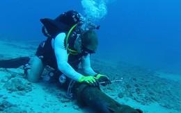 Tối 10/5 cáp quang biển AAG nối xong, Internet khôi phục