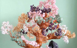 Gợi ý lựa chọn và bài trí cây tài lộc tăng phúc vận cho gia chủ trong ngày đầu Xuân mới