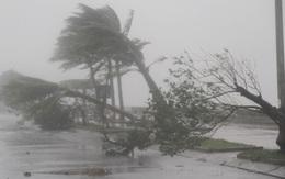 Khoảng 9-10 cơn bão, áp thấp trong năm 2015