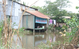 Cư dân ngoại thành TPHCM: Vừa dùng nước giếng khoan, vừa lo ngay ngáy