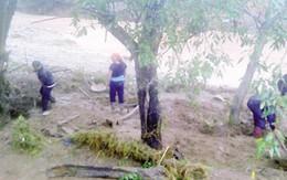 Khắc phục hậu quả bão số 1: Chính phủ yêu cầu không để đồng bào vùng lũ đói, khát