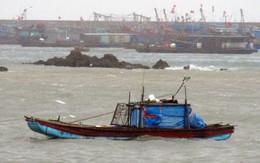 Tin tức mới nhất bão số 1: Bão Kujira đang đổ bộ, sức gió 90 km/h