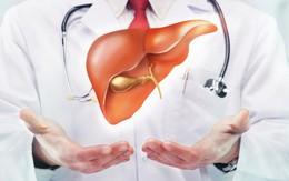 8 nguyên nhân không ngờ dẫn đến bệnh gan
