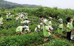 """""""Qua vụ thảm sát ở Bình Phước, càng phải dạy trẻ kỹ năng sống"""""""