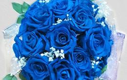 Hoa lạ cho ngày Tình yêu và Tết