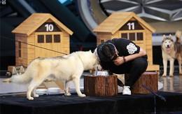 Khán giả rơi lệ xem chàng trai phân biệt chó qua tiếng uống nước