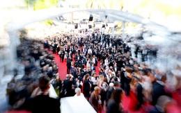 Tiết lộ giá bán dâm bất chấp lệnh cấm ở LHP Cannes