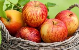7 ngày giảm cân nhanh nhờ bữa sáng dinh dưỡng