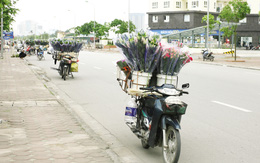Hoa lấn đường, tràn vỉa hè trong Ngày Phụ nữ Việt Nam