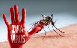 Các trường hợp nhiễm mới virus Zika có thể chưa dừng lại