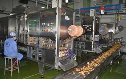 """Mục sở thị nhà máy của Thạch rau câu Long Hải bị """"tố"""" sản phẩm có côn trùng"""