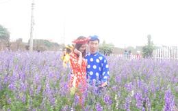 """Vườn đào Nhật Tân """"quyến rũ"""" lớp trẻ Hà thành"""
