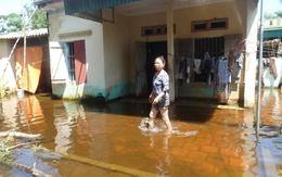 Người dân Sầm Sơn khốn khổ vì ngập lụt