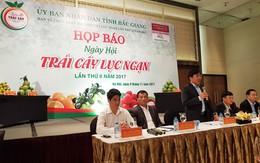 Thưởng thức miễn phí các loại trái cây đặc sản trong ngày hội độc đáo nhất Việt Nam