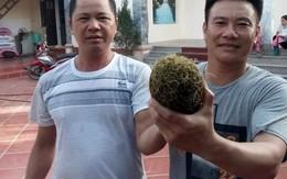 """Xôn xao """"vật thể lạ"""" nghi cát lợn nặng 1,5 kg ở Hải Dương"""