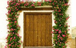 Bạn sẽ không tin những cánh cửa như thế này lại có thật ở trên đời