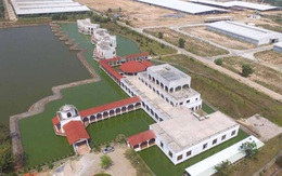 Vinamilk nhập hơn 2.000 con bò sữa cao sản từ mỹ, tiếp tục khẳng định vị thế hàng đầu ngành hàng sữa