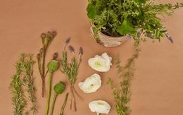 4 ý tưởng cắm hoa đẹp hút hồn cho nhà luôn tươi mới