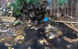 Hải Phòng yêu cầu quận Kiến An kiểm tra, xử lý việc gây ô nhiễm mương Đò Vọ